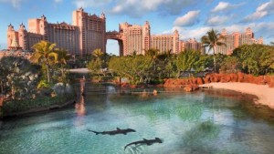 Atlantis_shark waterway